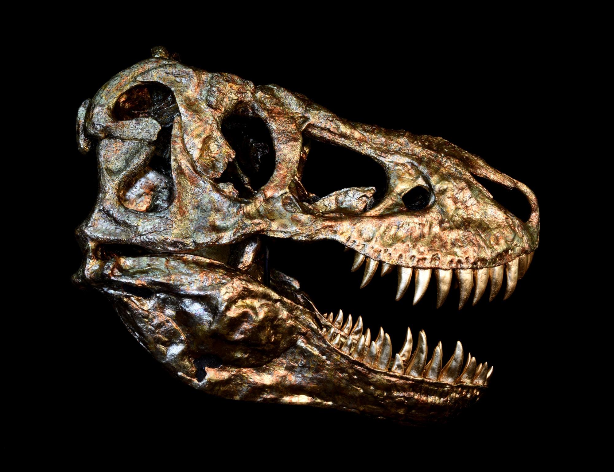 Tyrannosaurus Fossil Cast Oxidmetall