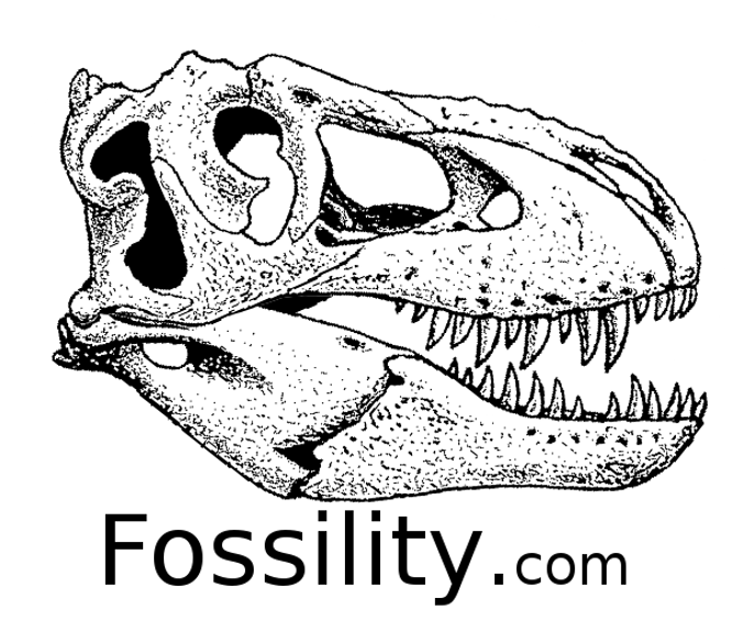 Fossility
